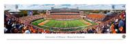 University of Illinois Panorama Print #2 (50 Yard) - Unframed