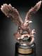 Perched Eagle Award