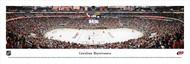 Carolina Hurricanes Panorama Print #1 (Center Ice) - Unframed