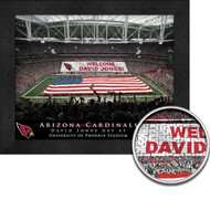 Arizona Cardinals Stadium Print - Personalized
