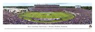 East Carolina University Panorama Print  #2 (50 Yard) - Unframed
