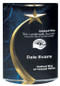 Shooting Star Rounded Acrylic Award in Blue, Green or Red - 3 Sizes  - Blue