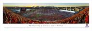 University of Arizona Panorama Print #5 (50 Yard - Stripe) - Unframed