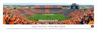 Auburn University Panorama Print #5 (50 Yard - Stripe) - Unframed