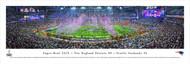 Super Bowl XLIX Panorama Print (2015) - Unframed