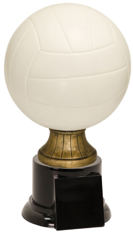 Full Size Color Volleyball Resin Trophy