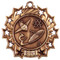 Science Ten Star Medal - Gold, Silver or Bronze | Scientific 10 Star Medallion | 2.25 Inch Wide Science Ten Star Medal - Bronze