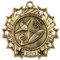 Science Ten Star Medal - Gold, Silver or Bronze | Scientific 10 Star Medallion | 2.25 Inch Wide Science Ten Star Medal - Gold