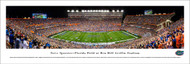 University of Florida Panorama Print #4 (50 Yard) - Unframed