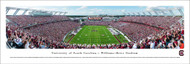 University of South Carolina Panorama Print #5 (End Zone) - Unframed