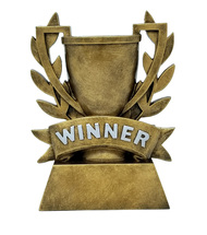"""WINNER Cup Trophy 