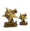 Star Trophy ⭐ Gold Star Award ⭐ Employee Superstar Recognition ⭐ 5 Inch or 7 Inch Tall