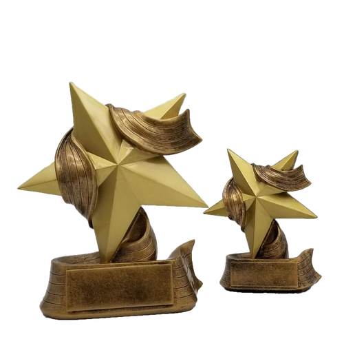 Star Trophy ⭐ Engraved Gold Star Award ⭐ Employee Superstar Recognition ⭐ 5 or 7 Inch Tall