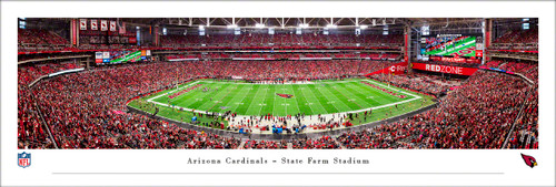 Arizona Cardinals Panorama Print #3 (50 Yard) - Unframed