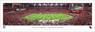 Arizona Cardinals Panorama Print #3 (50 Yard) - Unframed