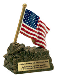 American Flag Color Resin Trophy | American Hero Award - 4""