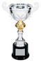Cup Trophy - Gold / Silver | Champion's Love Cup Award | 4 Sizes Available