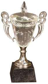 Cup Trophy - Crystal & Silver | Crystal Cup Award with Silver Handles | 8, 9.5 and 11.25 Inch Tall