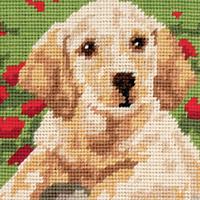 Anchor Tapestry Kit Starter - Labrador Puppy