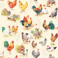 Chicken Talk | Nutex UK Limited | 800801 | Scenic, Cream