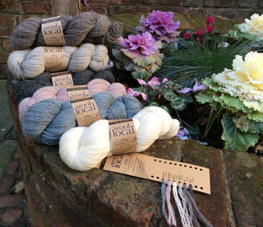 Erika Knight Wool Local 4 Ply 100% British Wool, 100g Hanks | Various Shades - Main2