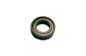 ITB™ PTFE Plunger Seal, Waters 225 µL Head (#3)