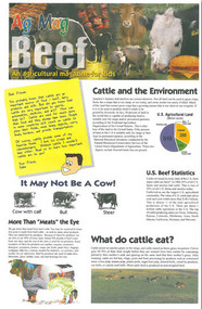 Beef Ag Mag