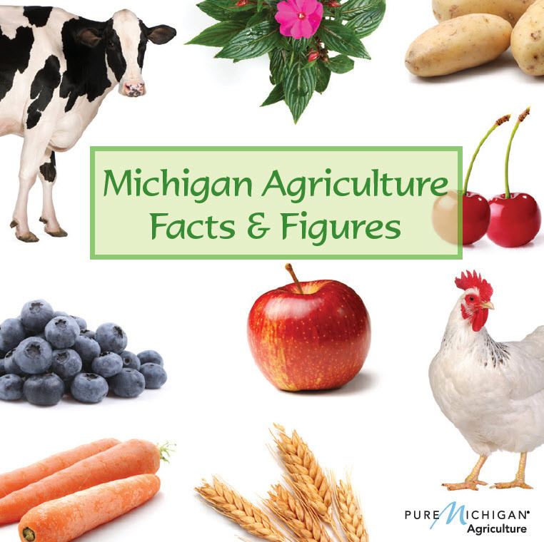 Michigan Agriculture Facts and Figures Book - Michigan Ag in