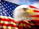 american-eagle-1.jpg