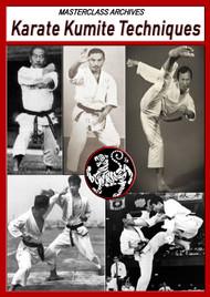 Karate Kumite Techniques