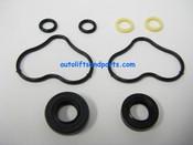 K40 SPX Fenner Stone Seal Kit for Hydraulic Gear Pump