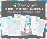 Gulf Breeze Brights Ultimate Printable Planner Kit - 200+ printable journal pages - Instant Download PDF