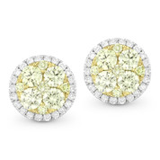 Yellow & White Diamond Pave Cluster & Halo Stud Earrings in 2-Tone 14k Gold - AM-DE10606