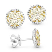 Yellow & White Diamond Pave Cluster & Halo Stud Earrings in 18k Yellow & White Gold - AM-DE11073