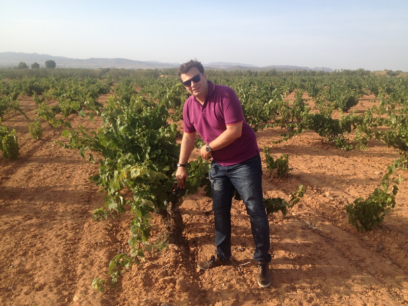 daniel-alba-in-vineyard-1.jpg