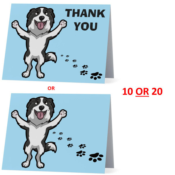 Border Collie Happy Dog NEW Folded Thank You Or Blank Note Card Set (Packaged In Sets Of 10)