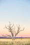 x1https://cdn3.bigcommerce.com/s-b76sgj/products/157/images/3460/_goldenhourmedium__74801.1520319910.1280.1280.jpgx2