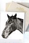 x1https://cdn10.bigcommerce.com/s-b76sgj/products/643/images/4710/BW_Horse__28481.1553559291.1280.1280.jpgx2