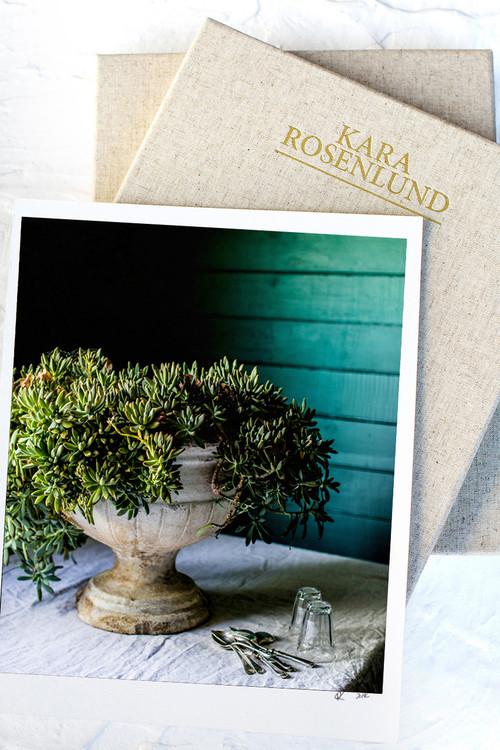 x1https://cdn10.bigcommerce.com/s-b76sgj/products/718/images/4864/Succulents_Urn__66156.1554168132.1280.1280.jpgx2