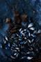 x1https://cdn10.bigcommerce.com/s-b76sgj/products/823/images/8450/Mussels_on_Rockshelf_44x66_V2__84319.1630366972.1280.1280.jpgx2