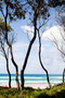 x1https://cdn10.bigcommerce.com/s-b76sgj/products/866/images/6411/XL_Lean_Australian_Summer_colour__25045.1587514347.1280.1280.jpg?c=2x2