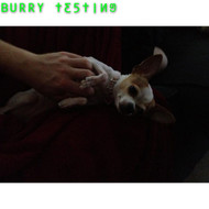 Burry Testing Rules 2