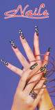 Window Decal Poster for Nail Salons (1 piece, NWP-14)