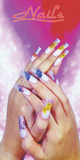 Window Decal Poster for Nail Salons (1 piece, NWP-18)