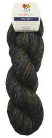 Motley Alpaca/Wool DK Yarn by Sugar Bush Yarns
