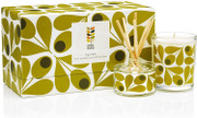 Mini Candle and Diffuser Gift Set - Fig Tree