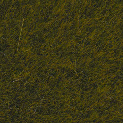 NOCH Meadow Wild Grass 6mm (50g) HO Gauge Scenics 07100
