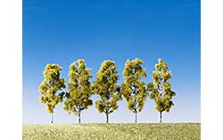 FALLER Birch Trees 55mm (5) HO Gauge Scenics 181486