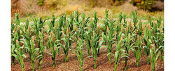 FALLER Maize Plants 25mm (36) HO Gauge Scenics 181250