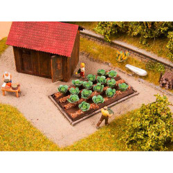 NOCH White Cabbages (16) Deco Minis HO Gauge Scenics 13217